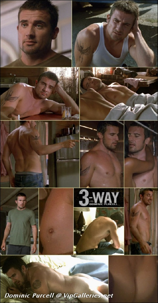 BMC :: Dominic Purcell nude on BareMaleCelebs.com
