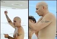 Pitbull Nude