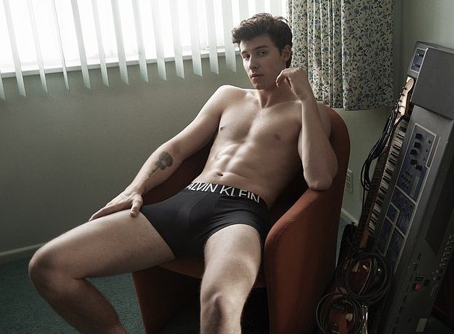 Shawn Mendes nude