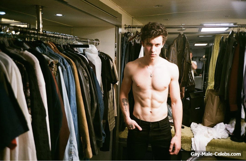 shawn mendes gay Search