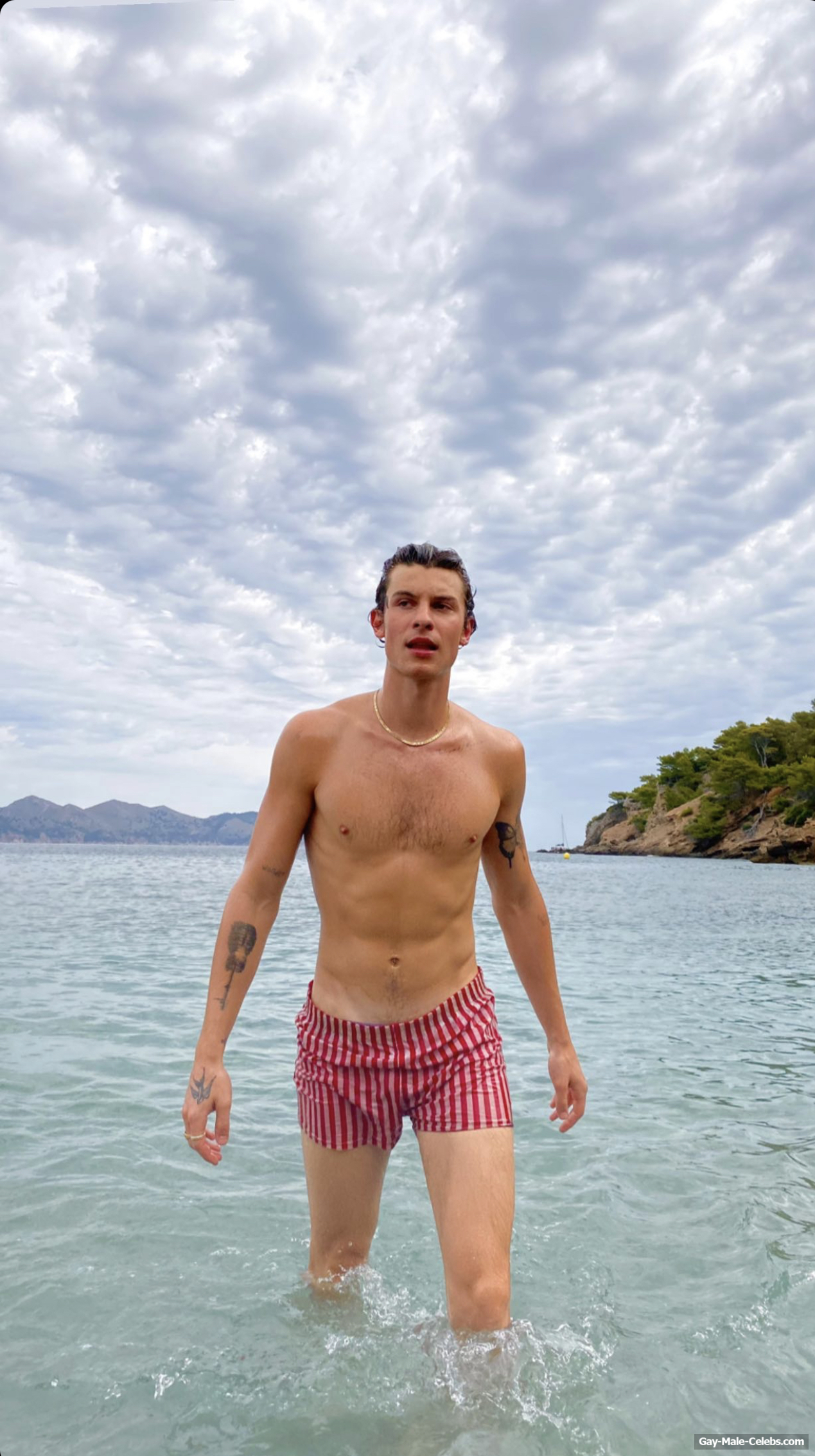 Shawn Mendes Bulge And Shirtless Beach Photos